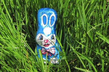 chocolate easter bunny isolated in grass photo