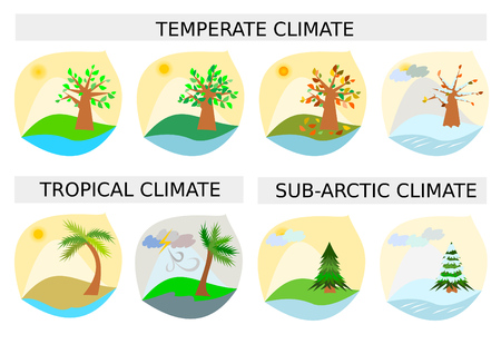 temperate: Eight weather illustrations  clipart vector images Illustration