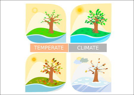 teaching aid: Four temperate seasons illustration - butterfly shaped stylised icons