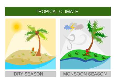 wet season: Dry season and wet season illustration - tropical weather, square format