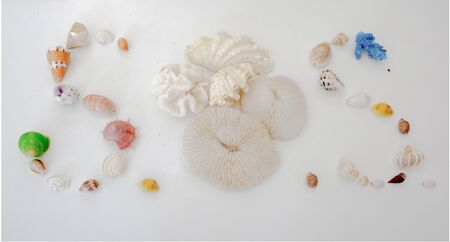 SOS written in various sea shells and coral