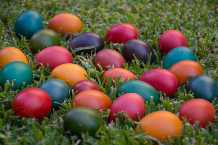 colourful Easter eggs in grass - background, concept Stock Photo