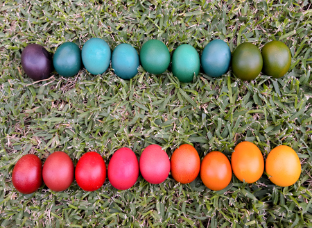 Natural Easter Eggs dyed in various colours - Eastern European Traditional style