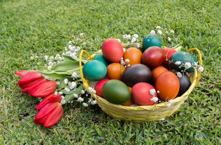 Colourful Easter Eggs in green grass