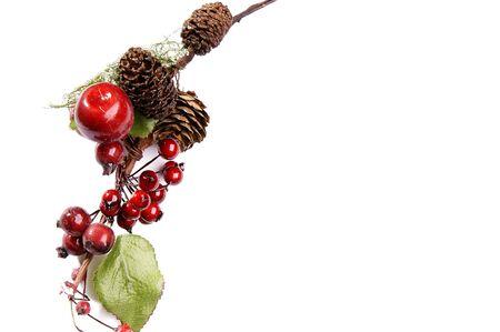 weihnachtsbaum: Christmas frame