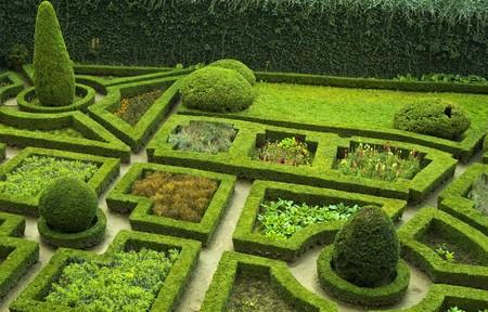 Garden Stock Photo - 4147098