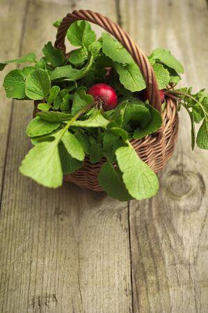 raddish: Portrait view of a wicker basket with fresh raddish
