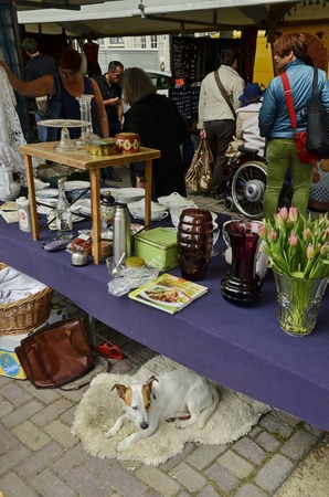 flee: Amsterdam, Netherlands - May 21, 2016: A vendor table with her dog under it at the weekend flee market at the Northern Market (Noordermarkt), in the Jordaan dictrict. Editorial