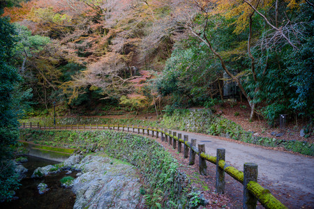 Autumn scenery forest at Minoo waterfall, Osaka, Japan