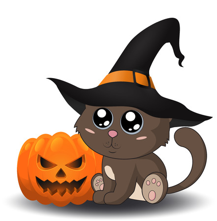 green cute: Halloween cat in a hat sitting near the pumpkin. Eps 10.