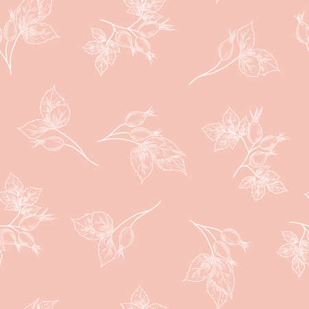 Seamless pattern with hand drawn rose hip