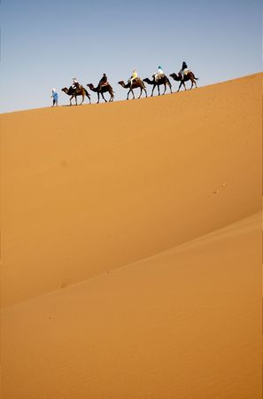 Camel caravan in the top of sand dune photo