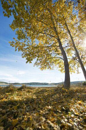 Autumn scene of Northern Portugal photo