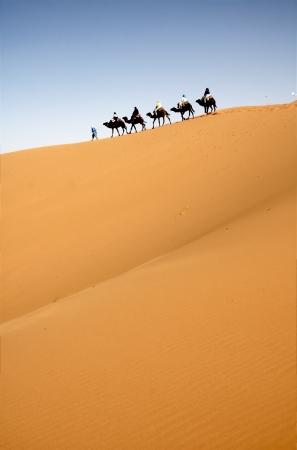 Camel caravan in the Moroccan Sahara Stock Photo - 8622644