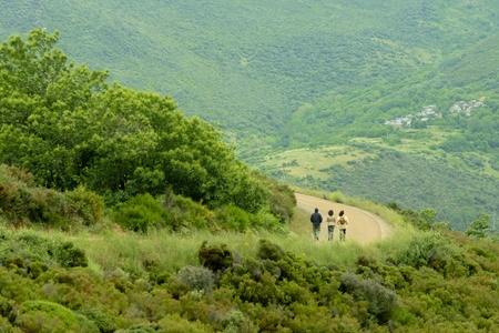 going down: excursionistas va por un camino de monta�a