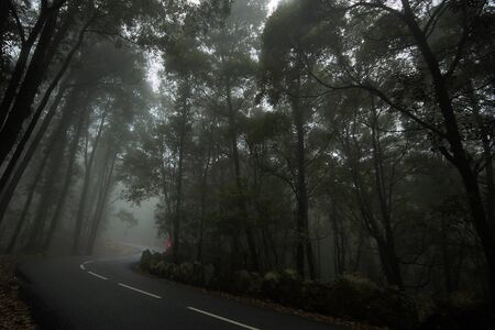 road at Sintra in morning fog Stock Photo