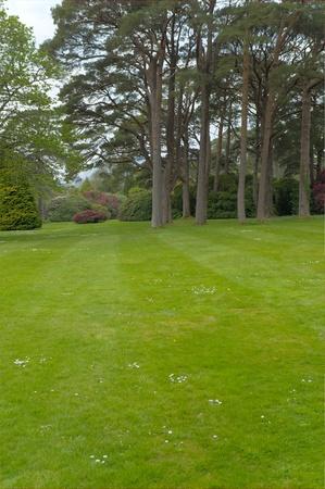 Gardens of Mucross Estate, Ireland