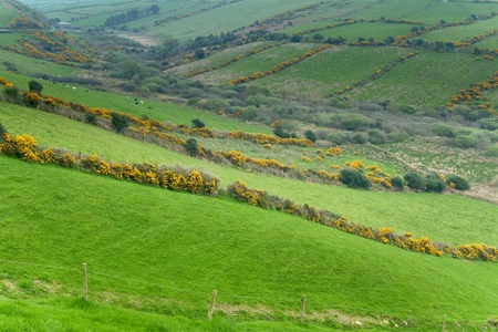 Countryside scene at Western Ireland Stock Photo
