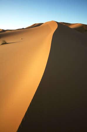 Sand dune half lit by morning sun