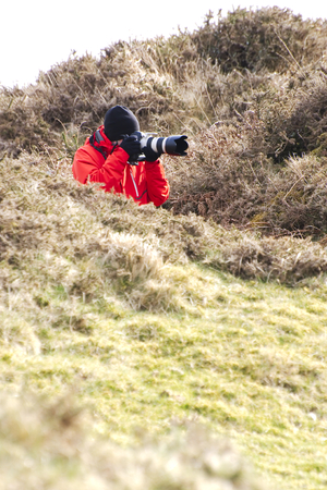 Wildlife photographer at Dartmoor