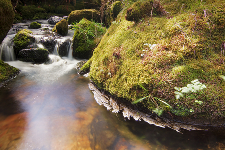 One of the small streams an Dartmoor