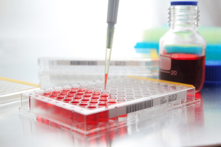 science tips: Sample being loaded into well plate for analysis in lab Stock Photo
