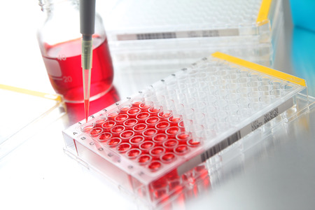 sample tray: Sample being loaded into well plate for analysis in lab Stock Photo