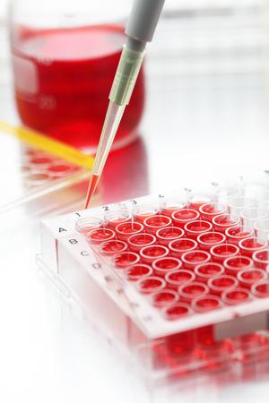 실험실에서 잘 접시에 채우는 샘플의 근접 촬영