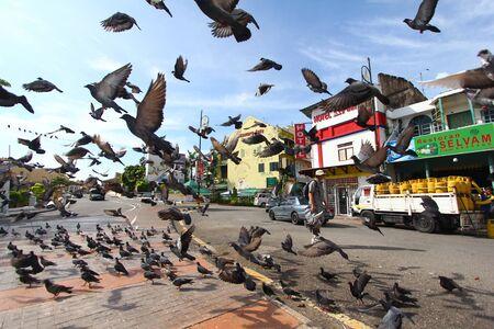 말레이시아 멜라 카 인근의 작은 인도에서 비둘기를 날아 다니는 관광객. 에디토리얼