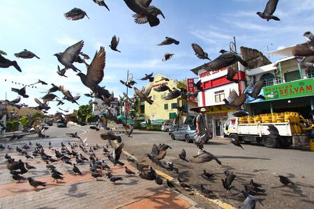 A tourist walks by flying pigeons nearby little India in Melaka, Malaysia. 新聞圖片