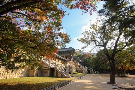 Bulguksa temple during autumn season in Gyeongju Korea