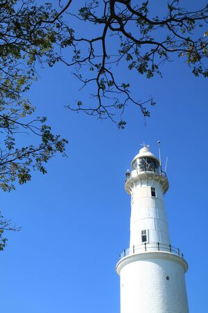 tree canopy: White lighthouse with tree canopy against blue sky backgrond