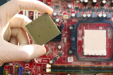 microprocessor: Gloved hand holding microprocessor chip