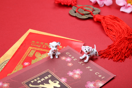 Miniature dogs with chinese new year angpow red packets