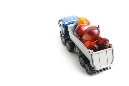 기름 야 자 열매를 운반하는 장난감 트럭