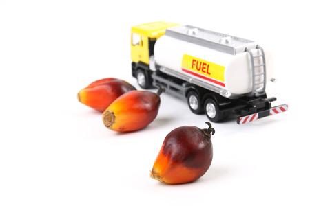 기름 야자 fruilets와 장난감 유조선 트럭을 사용하는 기름 야자 바이오 연료의 개념