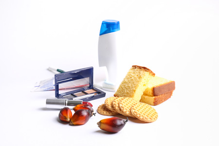Palm oil in everyday products