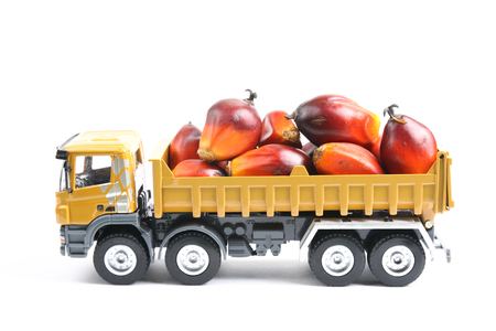 Toy truck carrying oil palm fruitlets