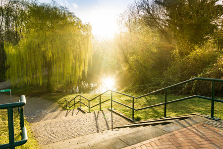 stairs into the park - sunrise scene in the morning