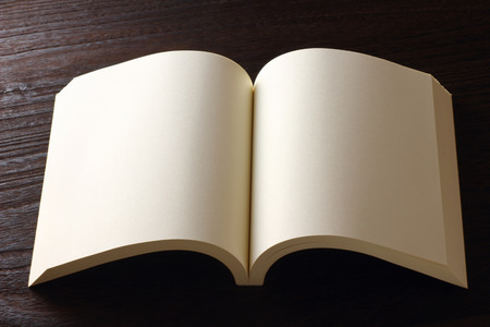 revision: blank page