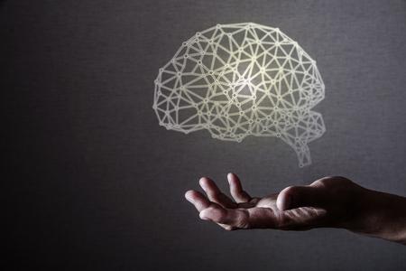 Menselijke hersenen Stockfoto - 67082909