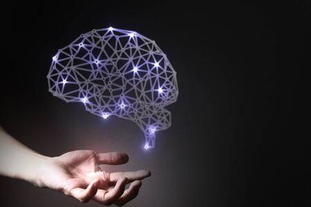 humna brain