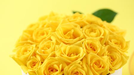 yellow flower arrangements Stock Photo