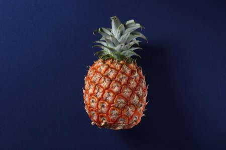 Pineapple on a dark blue background