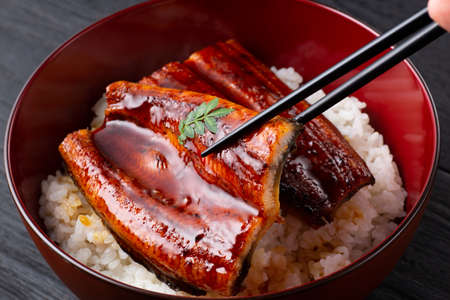 rice bowl topped with grilled eel