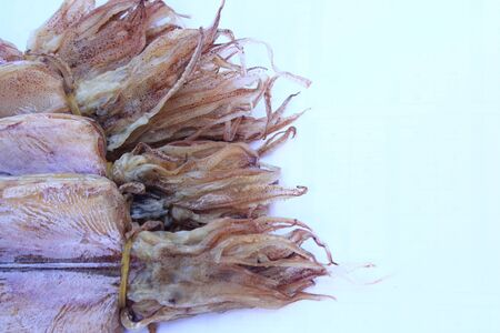 Dried squid isolated on white  photo