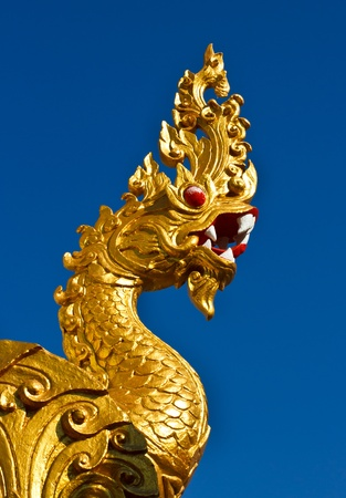 Golden dragon statue isolated on blue background photo