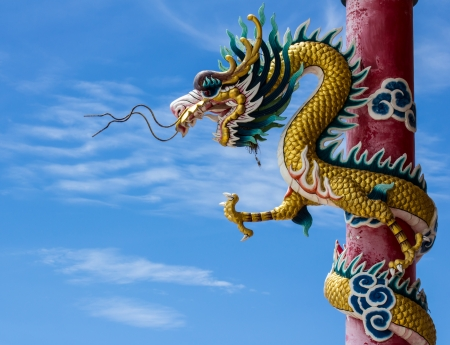 Sky blue beautiful  and gold dragon  photo