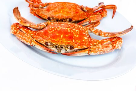 Steamed crab on white background Stock Photo