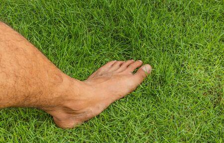 pelouse Pied homme nu sur l'herbe verte